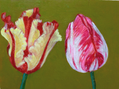 Andrea Letterie, Together tulips 2, Gemengde techniek op hout, 15x20 cm, €.225,-